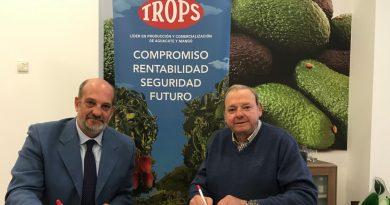 El Trops Málaga y la posible reanudación de la liga: fin del campeonato sin ascensos ni descensos